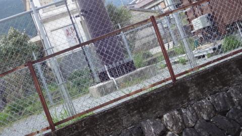 f:id:nobumichi02:20130413163933j:image:h150
