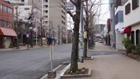 f:id:nobumichi02:20131228132830j:image:h150