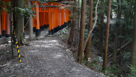 f:id:nobumichi02:20140322120911j:image:h150