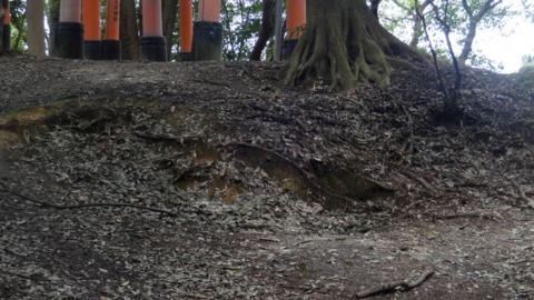 f:id:nobumichi02:20140322121000j:image:h150