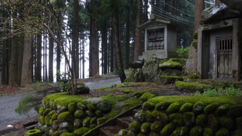 f:id:nobumichi02:20150419132830j:image:h150