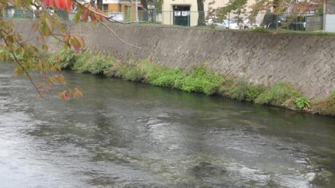 f:id:nobumichi02:20151010113758j:image:h150