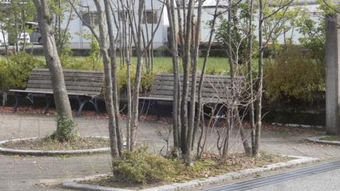 f:id:nobumichi02:20151206121331j:image:h150