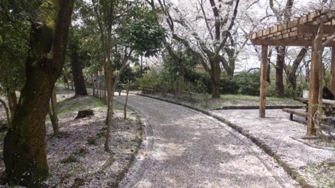 f:id:nobumichi02:20160409123627j:image:h150