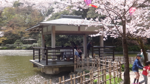 f:id:nobumichi02:20160409124643j:image:h150