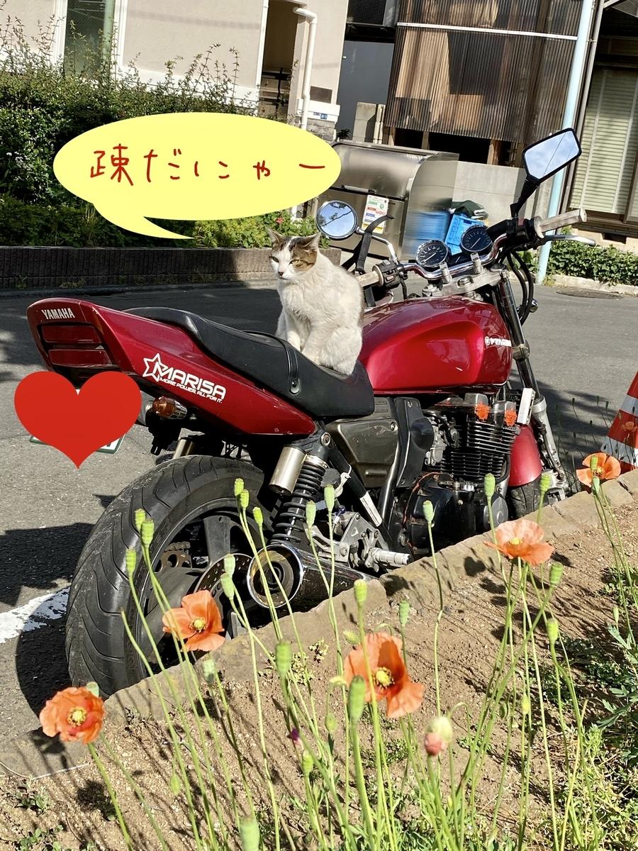 f:id:nobunaga7:20200508224524j:plain