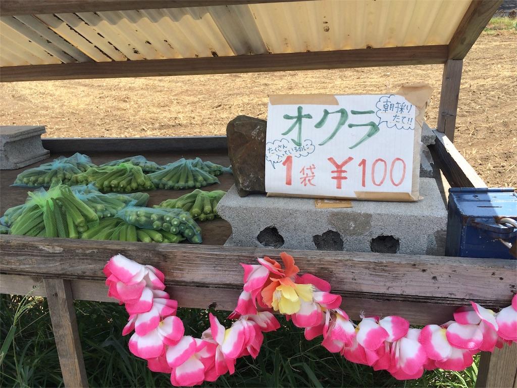 f:id:nobunobu1210:20160824221233j:image