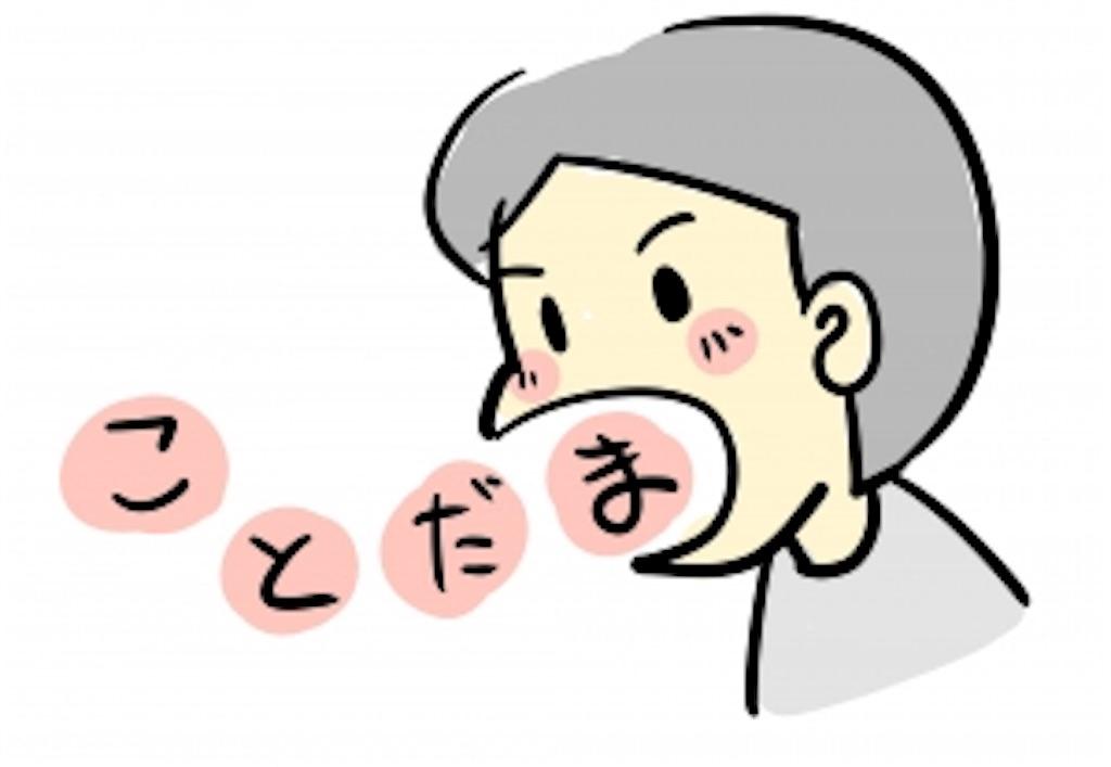 f:id:nobunobujyaa:20190415152051j:image