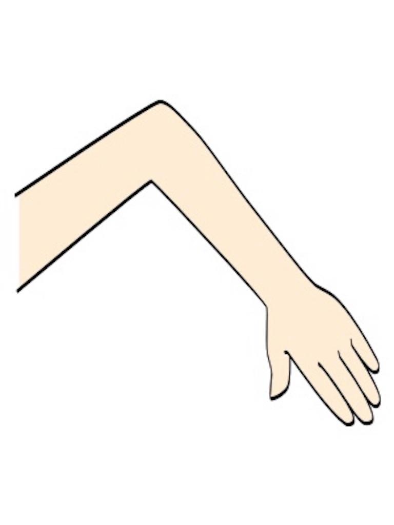 f:id:nobunobujyaa:20190415235855j:image