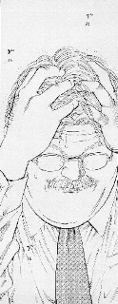 f:id:nobuta39:20170522113500j:image