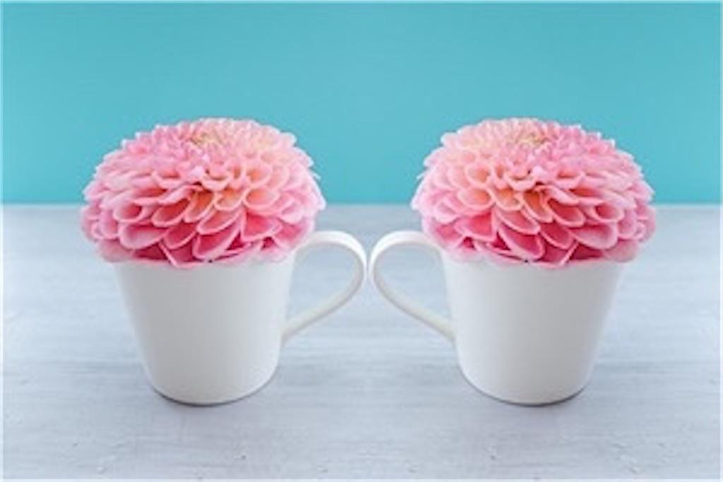 2つのマグカップに入ったピンク色の花
