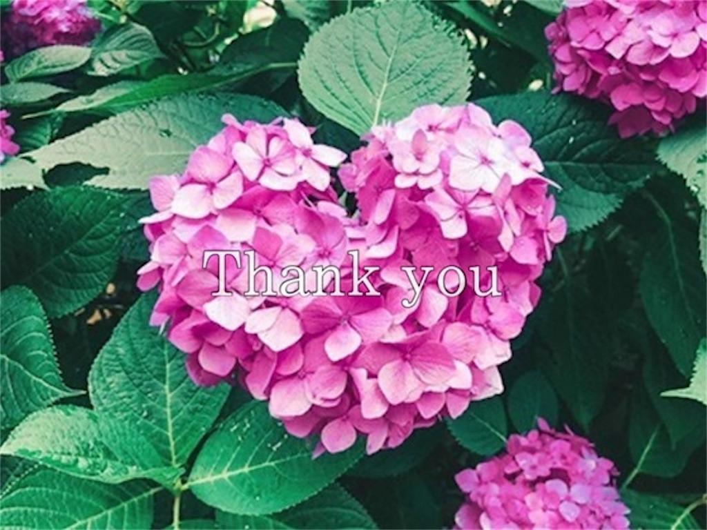 ピンク色の紫陽花とありがとうの文字