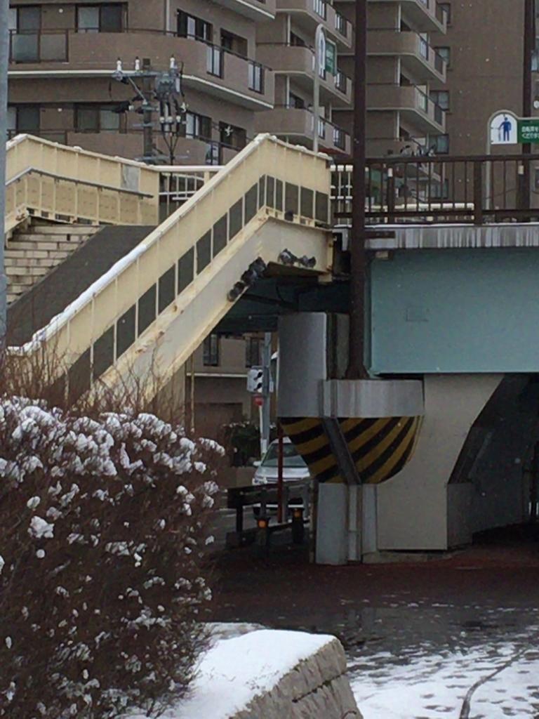 f:id:noharanohara:20190211140143j:plain