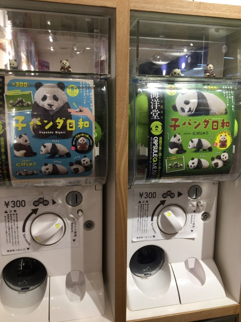 f:id:noharanohara:20190308032717j:plain