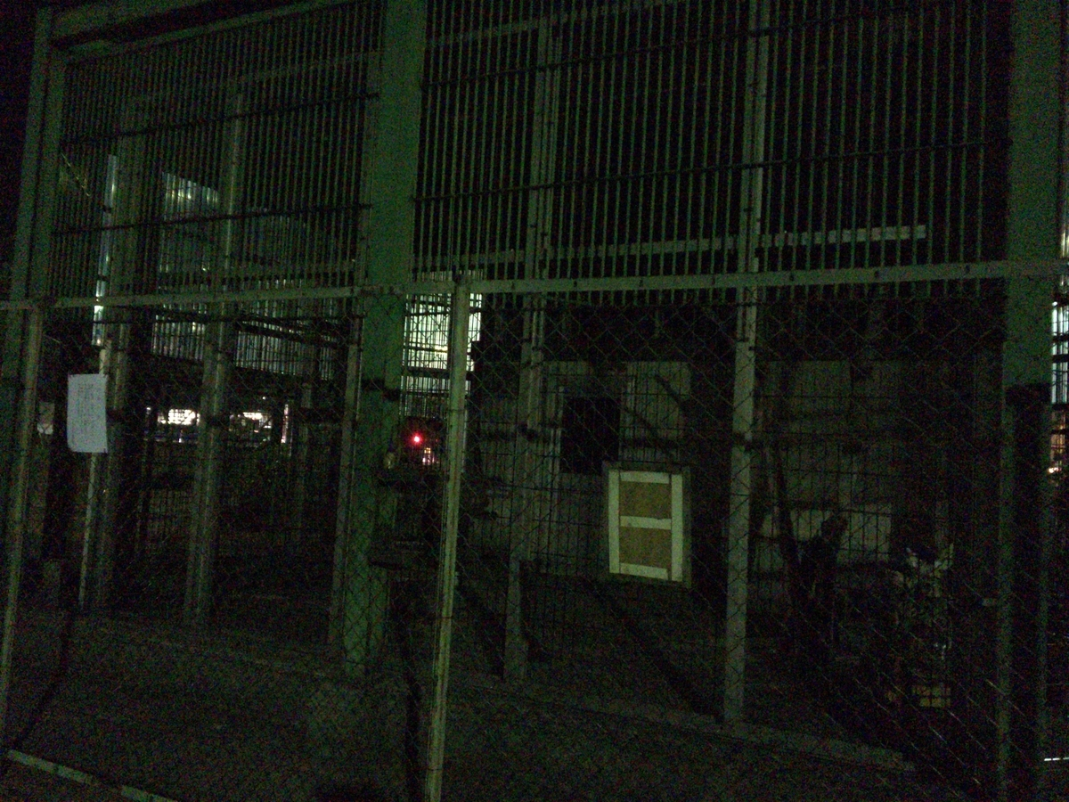 f:id:noharanohara:20190413191121j:plain