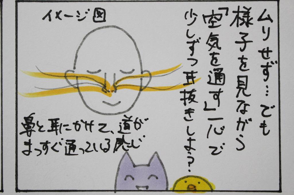 f:id:noika:20170910115750j:plain