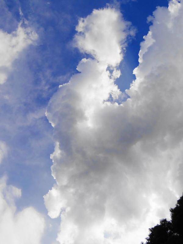 f:id:noir555:20121001213024j:image:w640