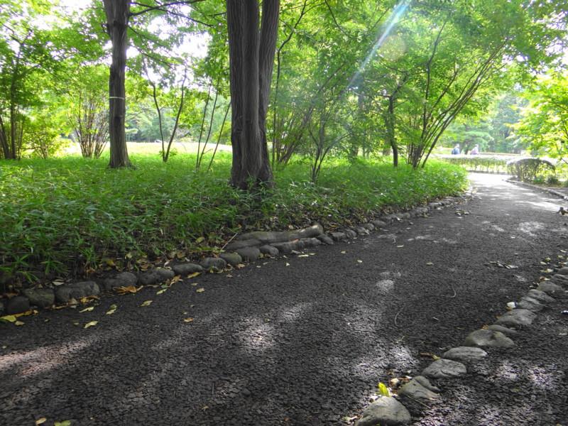 f:id:noir555:20121001221023j:image:w640
