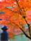 奈良公園内橋梁と紅葉