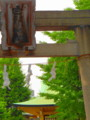 白鬚神社1