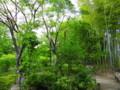 向島百花園、竹林