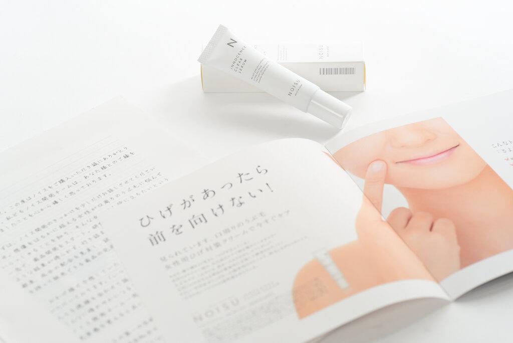 f:id:noisu-hige:20170524220823j:plain