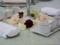 披露宴。テーブルの中心部を撮る。