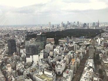 f:id:noji_rei:20200311174301j:plain