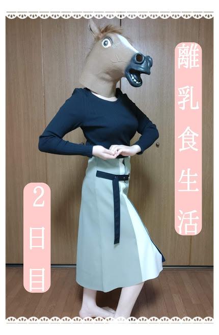 f:id:nojima_blog:20200219234746j:plain