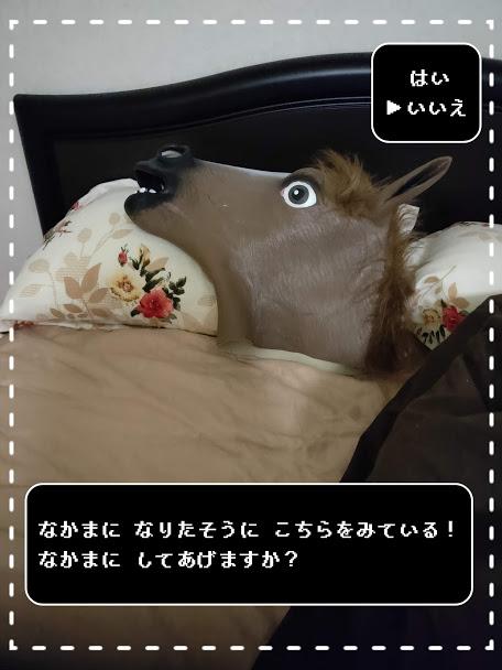 f:id:nojima_blog:20200226213205j:plain