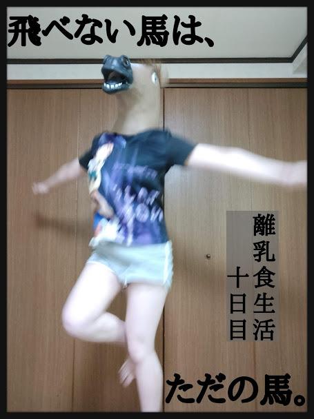 f:id:nojima_blog:20200228231748j:plain