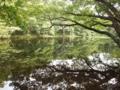 f:id:nojiri_h:20111008191238j:image:medium:left