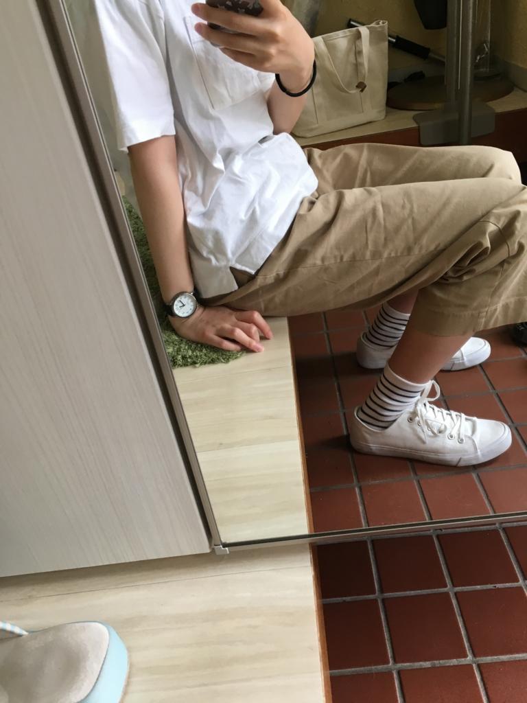 f:id:nokakamon:20170524224527j:plain