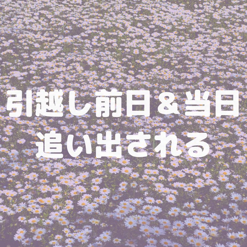 f:id:nokakamon:20190606105612p:plain