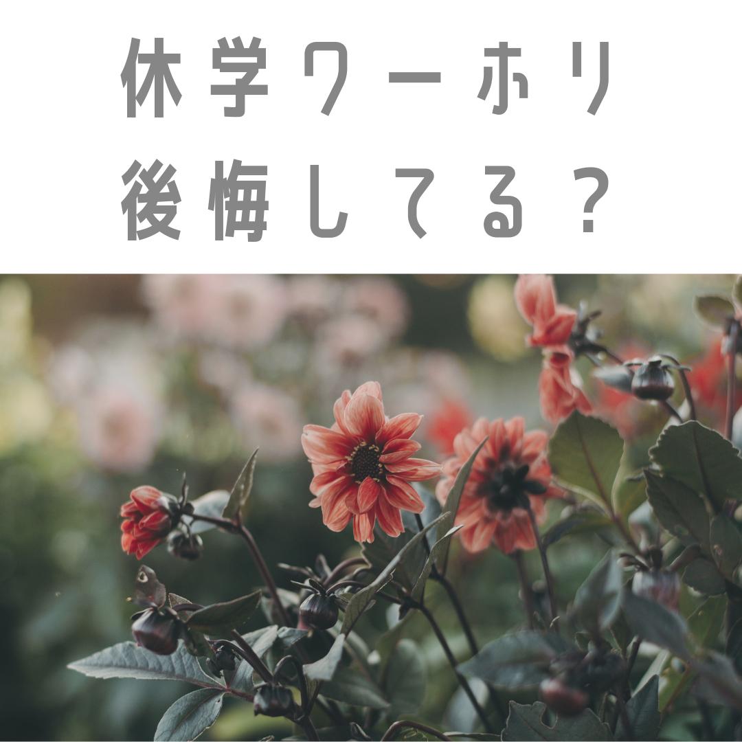 f:id:nokakamon:20190714191626p:plain