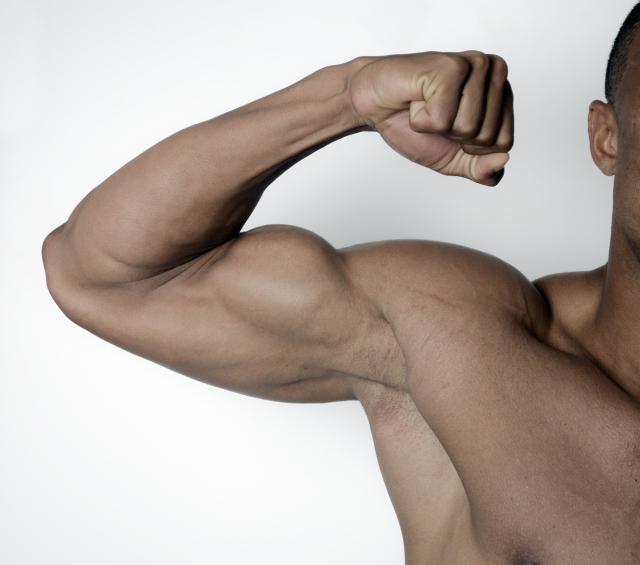 筋肉質な男性の画像