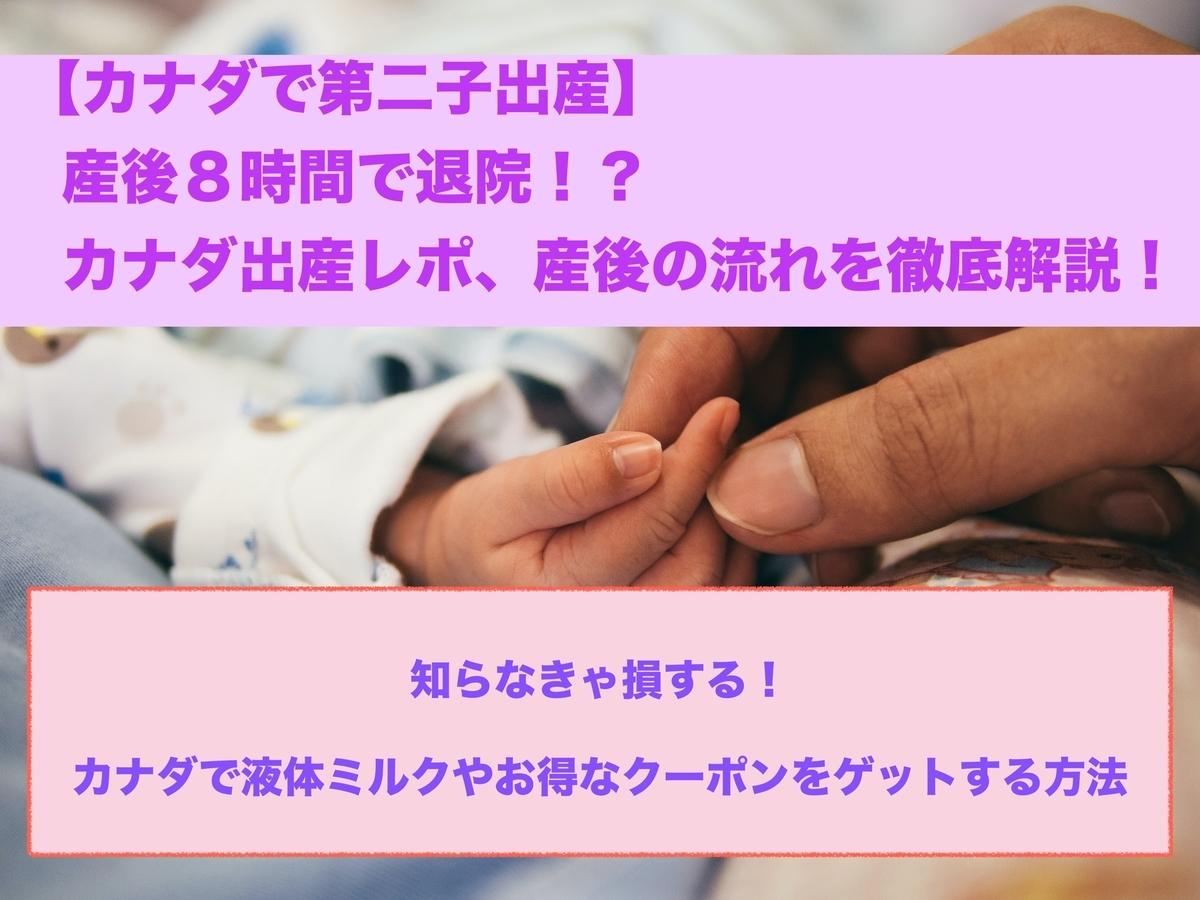 f:id:nokanoka02:20210107023715j:plain