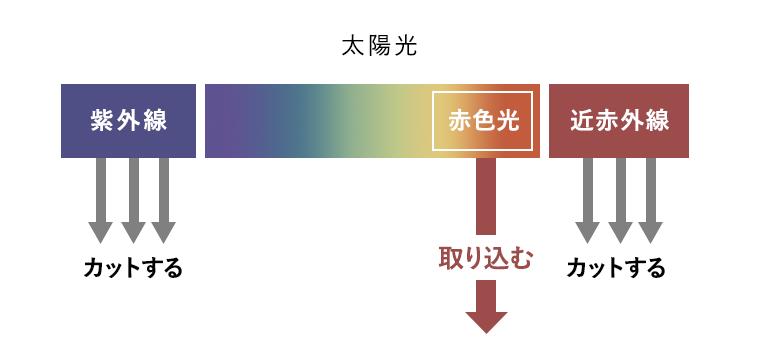 f:id:noko_kuma:20210427223300p:plain