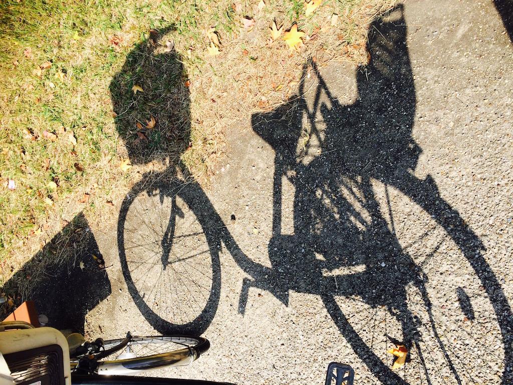 自転車が隔離された!?
