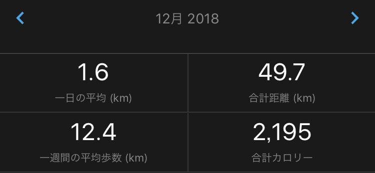12月ランニング記録