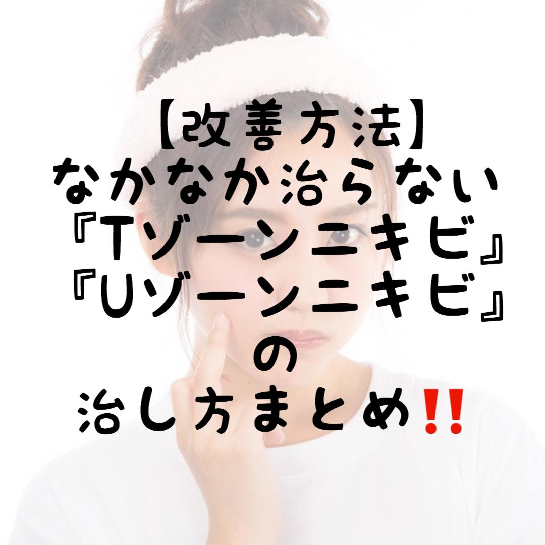 f:id:nokonoko_o:20200813104852j:plain