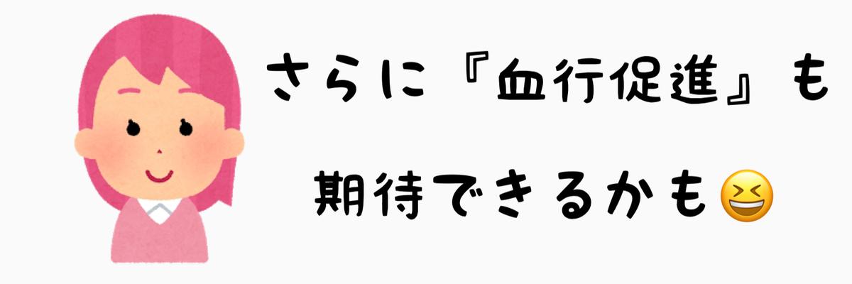 f:id:nokonoko_o:20201121160018j:plain