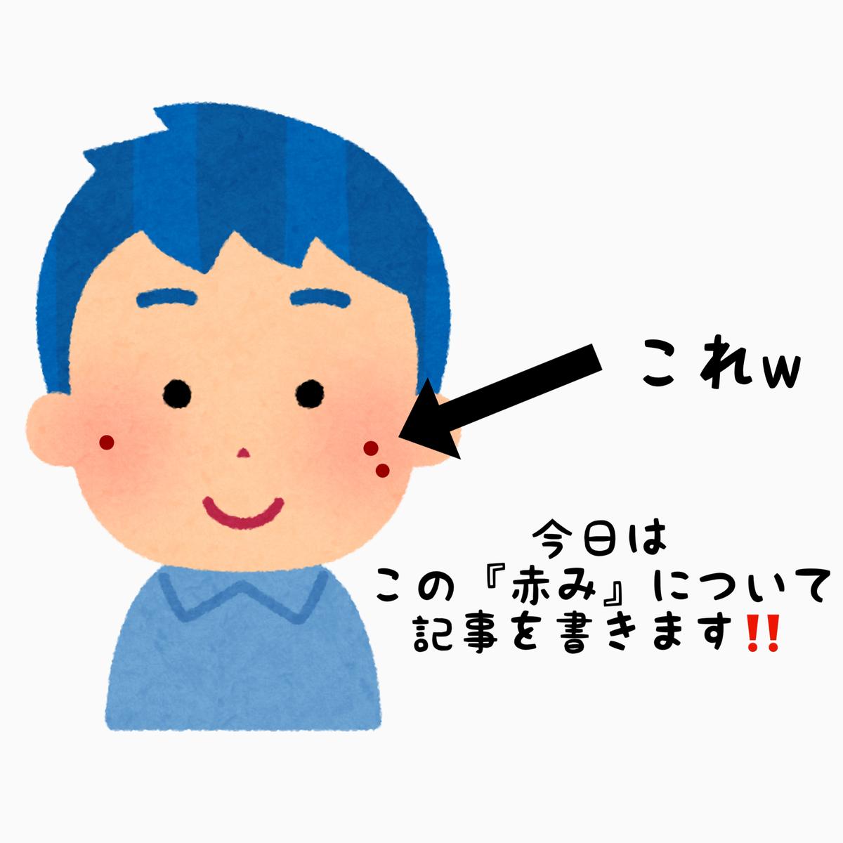 f:id:nokonoko_o:20201124161607j:plain