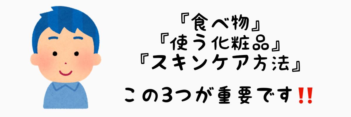 f:id:nokonoko_o:20201216105132j:plain