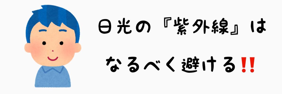f:id:nokonoko_o:20201217172841j:plain
