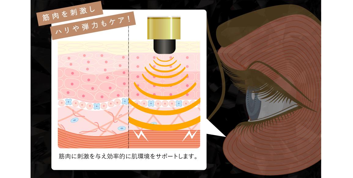 f:id:nokonoko_o:20210117193118p:plain