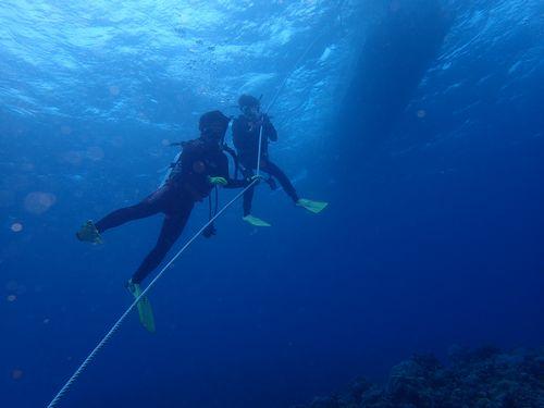 沖縄那覇市旅行春休み観光におすすめ大学生高齢者楽しめる貸切体験ダイビングライセンス取得