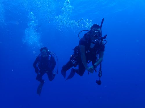 沖縄那覇市旅行春休み観光におすすめ貸切体験ダイビングライセンス取得大学生高齢者楽しめる