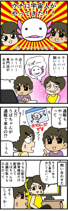 nomi4_160910-01
