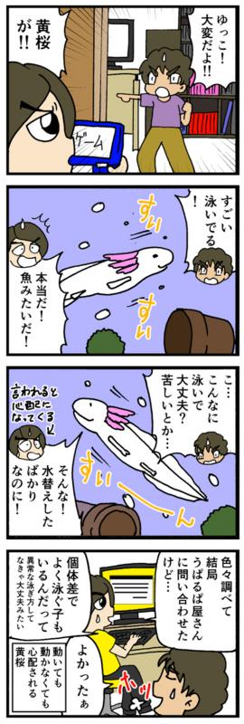 nomi4_160915-01